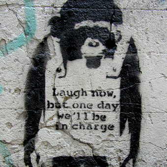 Banksy Stencil Art Canvas for Men at The Inside Man